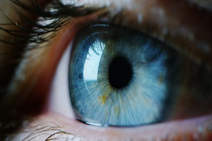 perfect blue eye macro in a sterile environment and perfect vision and vision insurance