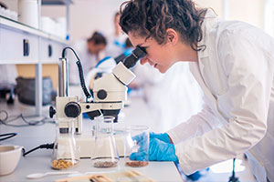 Biotech benefits consulting