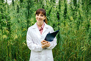 Cannabis benefits consulting going over health insurance